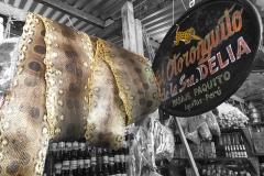 Iquitos-Belem6