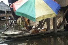 Iquitos-canali3